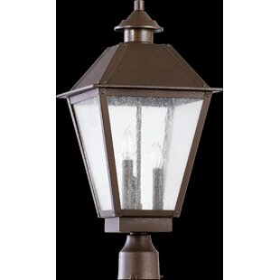 Find Mei Outdoor 3-Light Lantern Head By Alcott Hill