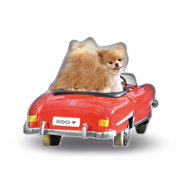 Cool Ride Boo Throw Pillow by LiLiPi