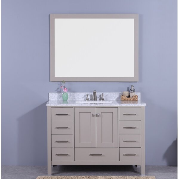 Bluebird 49 Single Bathroom Vanity Set with Mirror by Winston Porter