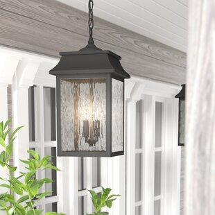 Compare & Buy Ericsson 2 Light Outdorry Hanging Lantern By Alcott Hill