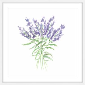 'Lavender Herbs' by Thimble Sparrow Framed Painting Print by Marmont Hill