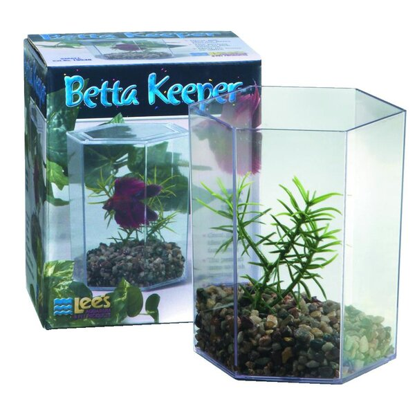 Betta Keeper Aquarium Tank by Lees Aquarium & Pet