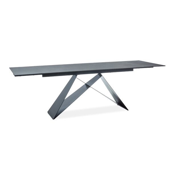 Tadashi Extendable Dining Table by Orren Ellis
