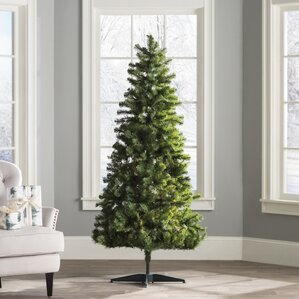 Christmas Trees You'll Love | Wayfair