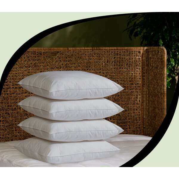 Ultra Fresh Hypoallergenic Fiber 20 x 26 Pillows (Set of 4) by BioPEDIC