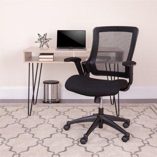 Hayse Mesh Task Chair