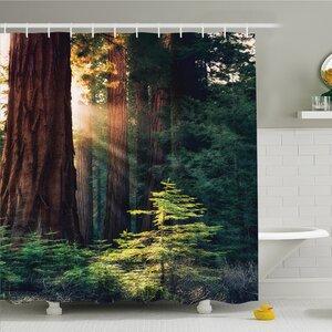 National Parks Home Morning Sunlight in Wilderness Yosemite Sierra Nevada Nature Art Shower Curtain Set