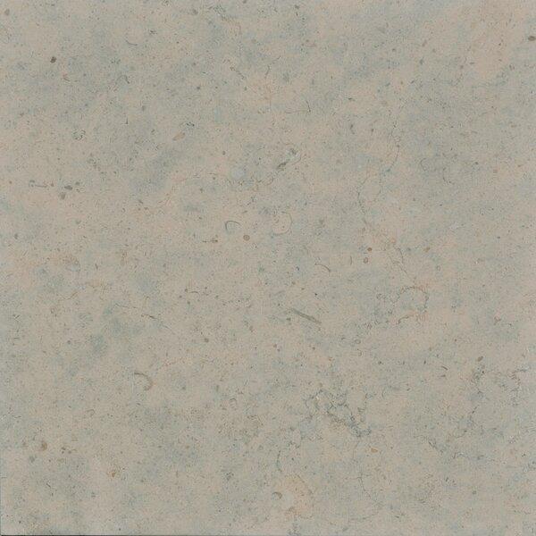 Duvel 12 x 12 Limestone Field Tile in Gray