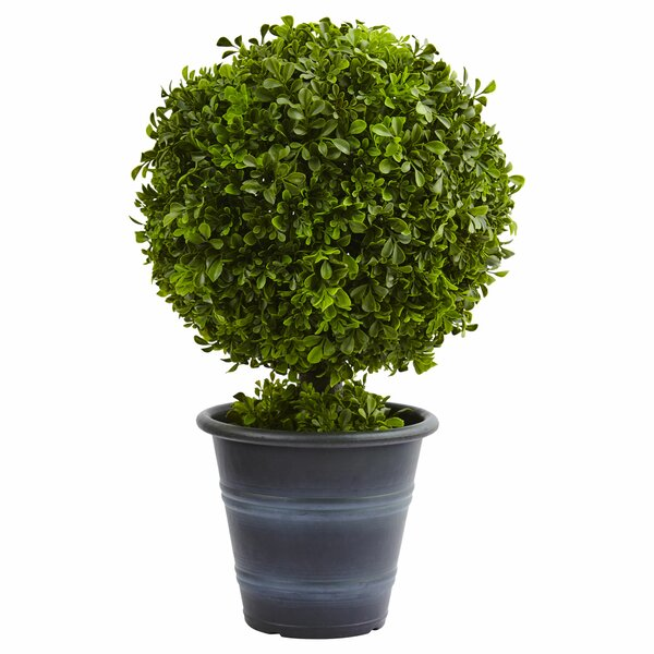 Boxwood Ball Topiary in Planter by Nearly Natural