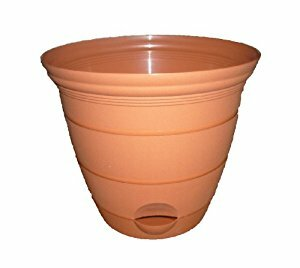 Self-Watering Pot Planter by Misco Home and Garden