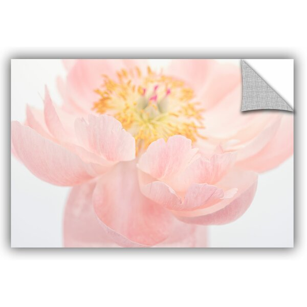 Pink Peony Photographic Print by Wrought Studio