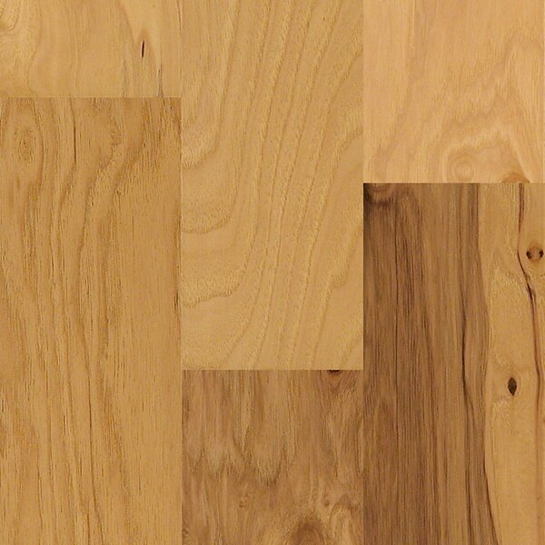Globe 5 Engineered Hickory Hardwood Flooring in Point Arena by Shaw Floors