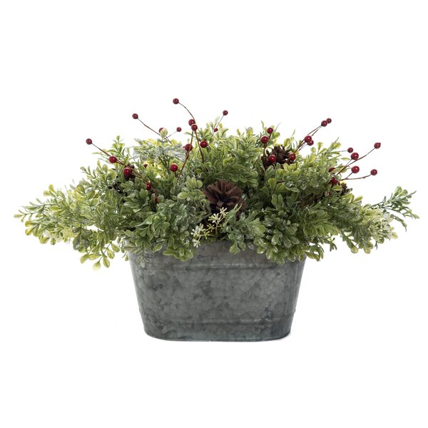 Winter Green Floral Arrangement in Pot by The Holiday Aisle