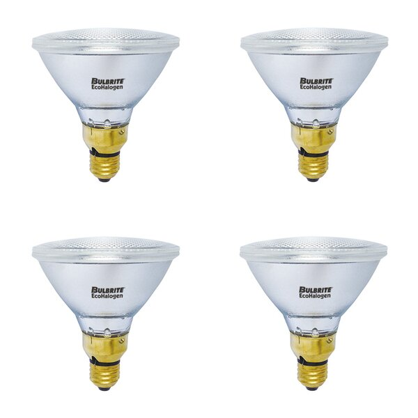 E26 Dimmable Halogen Light Bulb (Set of 4) by Bulbrite Industries