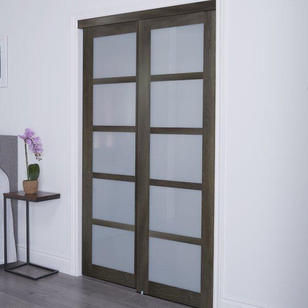 Baldarassario 5 Lite 2 Panel MDF Sliding Interior Door by Erias Home Designs