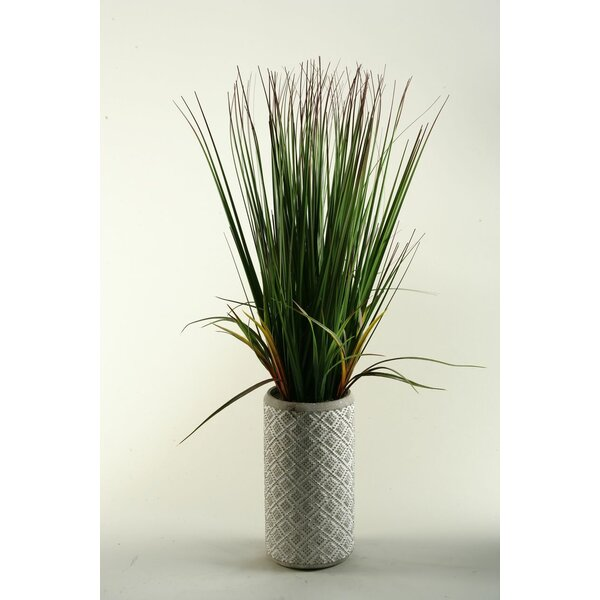 32 Onion Grass in Ceramic Decorative Vase by D & W Silks