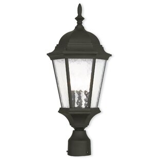 Reviews Busse 3-Light Lantern Head By Darby Home Co