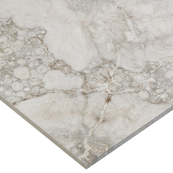 Newry 12 x 12 Porcelain Field Tile in Mink by Itona Tile