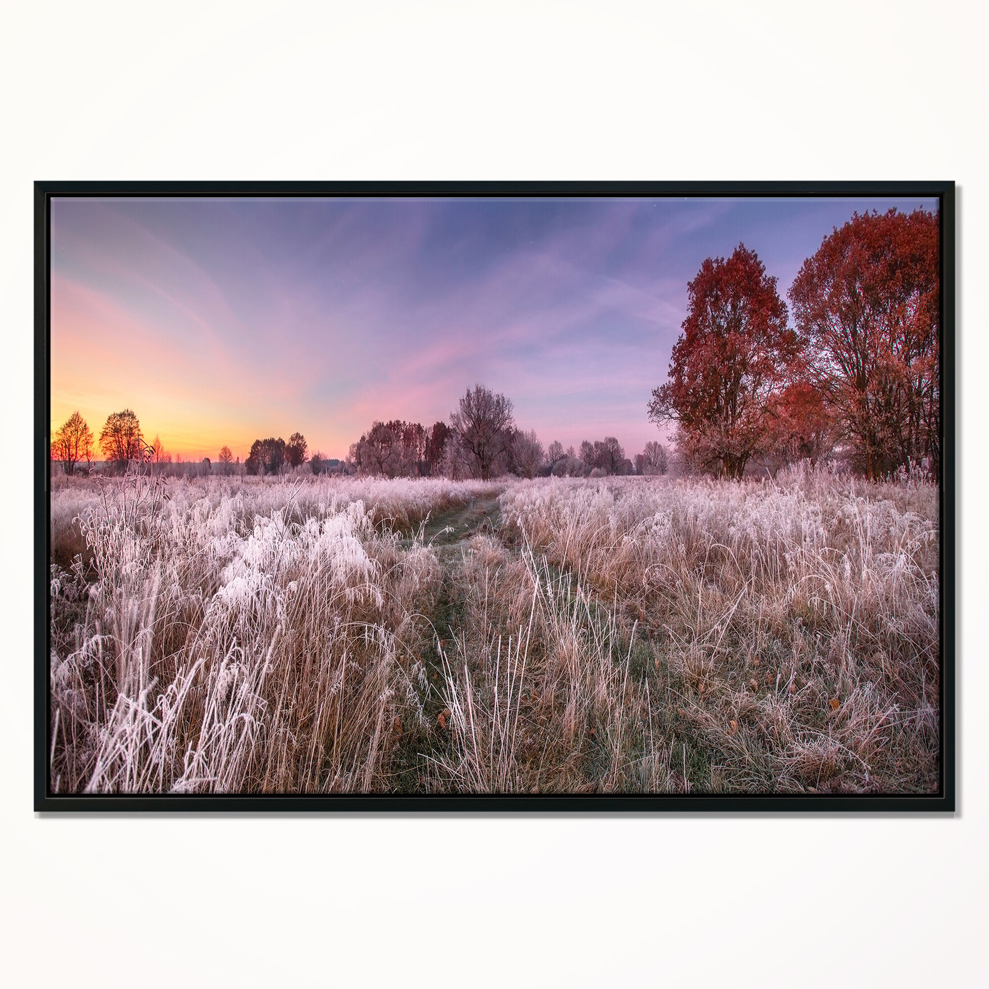East Urban Home Frosty Fall Trees With Red Leaves Framed Photographic Print On Wrapped Canvas Wayfair