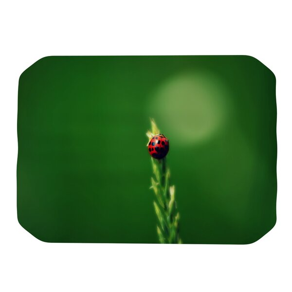 Ladybug Hugs Placemat by KESS InHouse