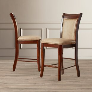 Reviews Swenson 24 Bar Stool (Set of 2) by Darby Home Co