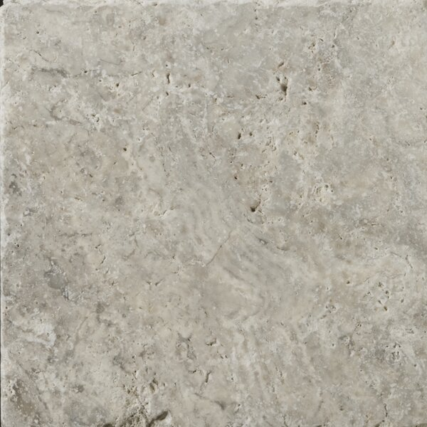 Travertine 8 x 8 Field Tile in Ancient Tumbled Silver by Emser Tile