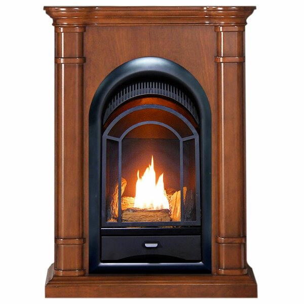 Low Price Heating Vent Free Propane/Natural Gas Fireplace