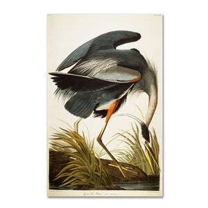 Great Blue Heron by John James Audubon Painting Print on Wrapped Canvas by Trademark Fine Art