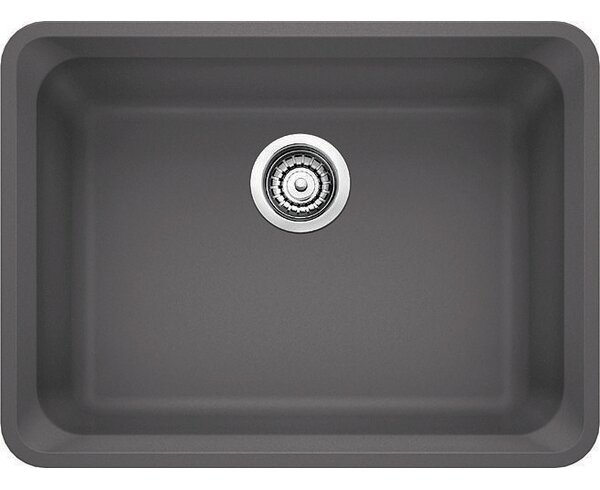 Vision 24 L x 18 W Single Kitchen Sink by Blanco