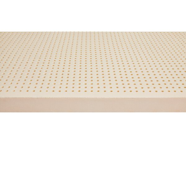 Sheldon 3 inch Latex Mattress Topper by Alwyn Home