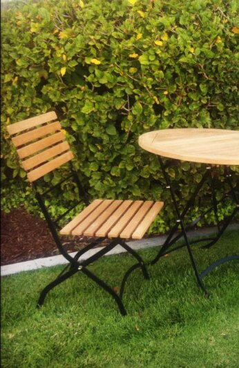 Schrimsher Folding Teak Patio Dining Chair (Set of 2) by Charlton Home Charlton Home