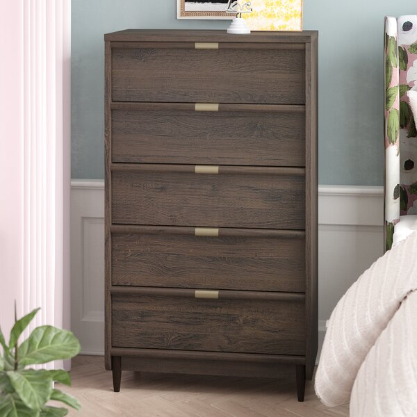 Broadridge 5 Drawer Chest by Willa Arlo Interiors