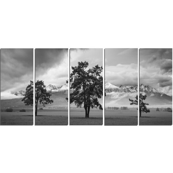 Three Trees in Front of Mountains 5 Piece Photographic Print on Wrapped Canvas Set by Design Art