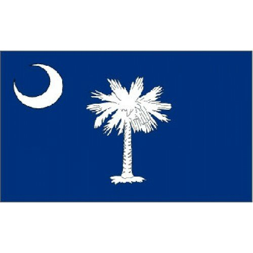 South Carolina Traditional Flag by NeoPlex