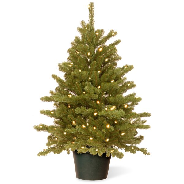 Hampton 3 Green Spruce Artificial Christmas Tree With 100 Clear Lights By National Tree Co.