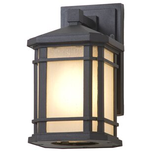 Buy clear Cardiff 1-Light Outdoor Wall Sconce By DVI