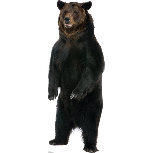 Brown Bear Cardboard Stand-Up by Advanced Graphics