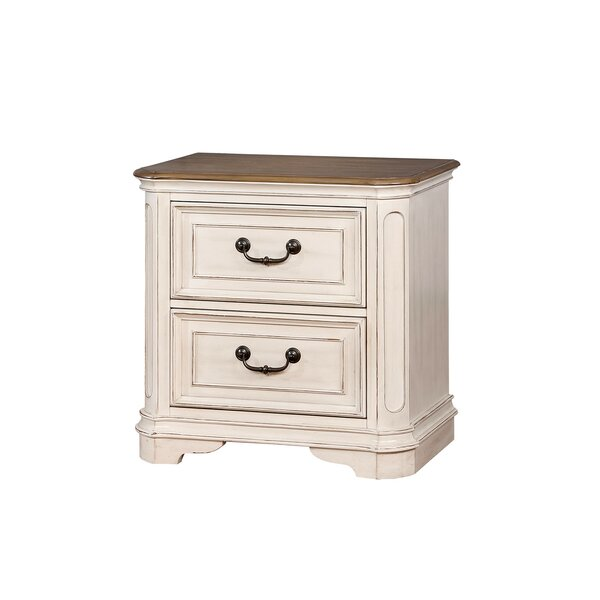 Aiden 2 Drawer Nightstand by One Allium Way
