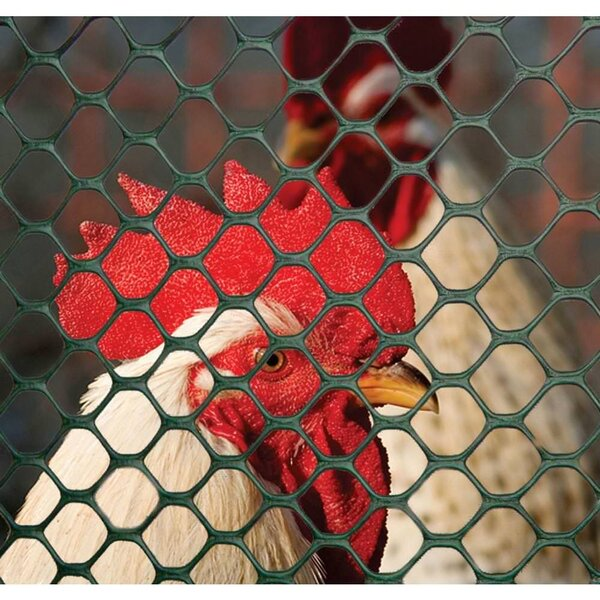 Poultry Hex Netting Fencing by Boen
