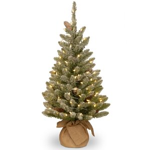 snowy 3 green fir artificial christmas tree with 50 led white lights and stand - Christmas Tree White Lights