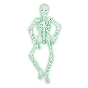 Halloween Mr. Bones-A-Glo Skeleton