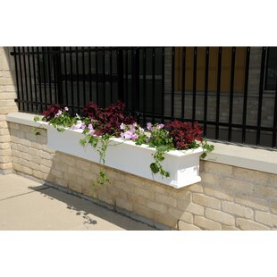Rectangular planters youll love wayfair yorkshire self watering plastic window box planter workwithnaturefo