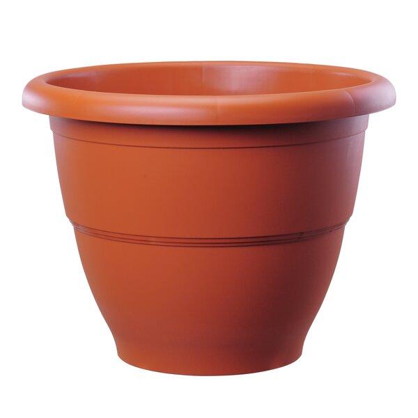 Winder Round Plastic Pot Planter by August Grove
