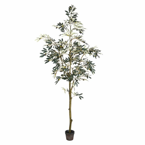 Artificial Potted Olive Floor Foliage Tree in Pot by Charlton Home