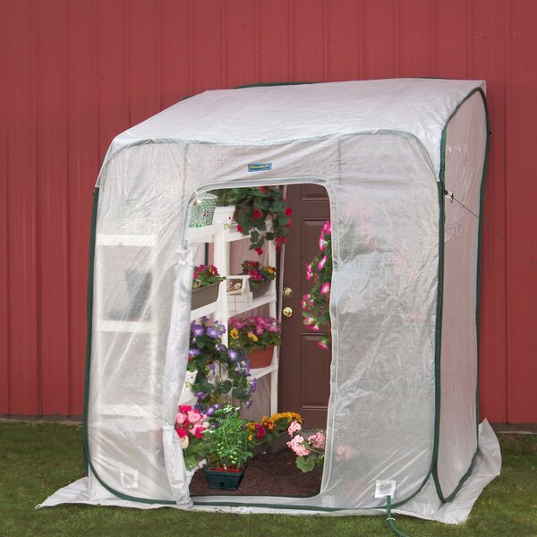 Hothouse 6 Ft. W x 6 Ft. D Lean-To Greenhouse by Flowerhouse