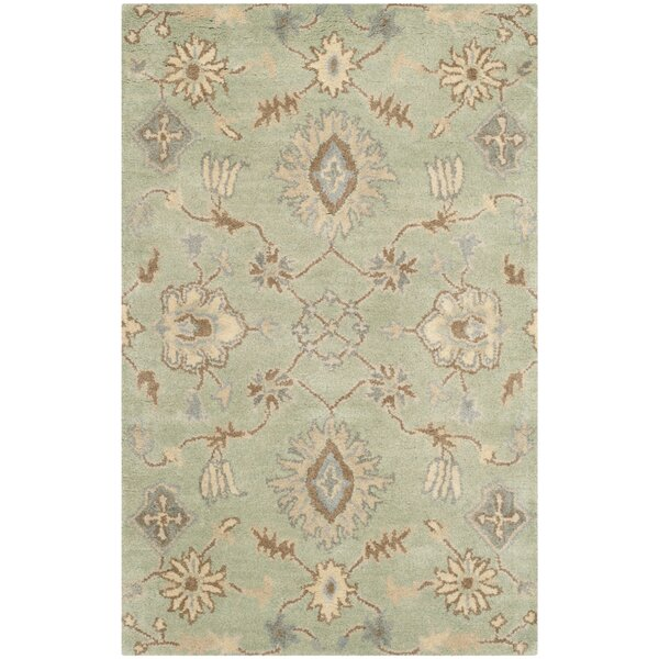 Colesberry Light Green Area Rug by Charlton Home