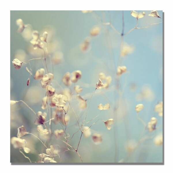 Little Secrets by Beata Czyzowska Young Photographic Print on Wrapped Canvas by Trademark Fine Art