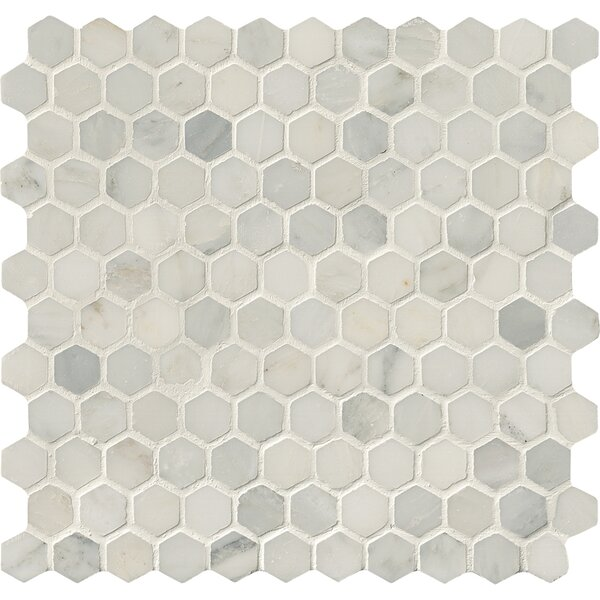 Arabescato Carrara 12 x 12 Marble Tile in White by MSI