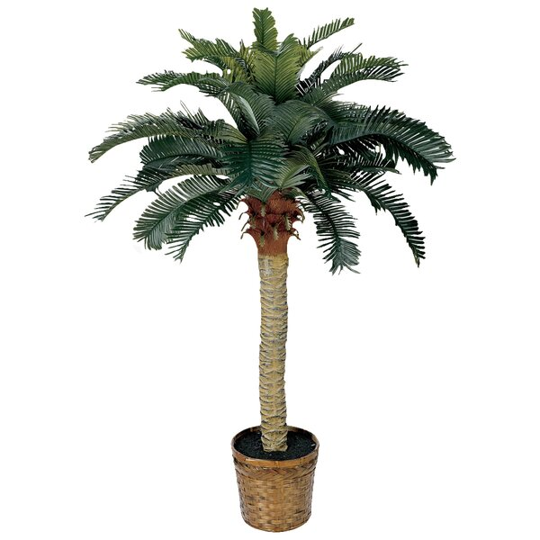 Palm Tree with Basket by Beachcrest Home