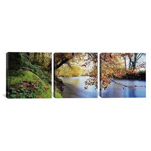 River Dart, Bickleigh, Mid Devon, Devon, England 3 Piece Photography Print on Wrapped Canvas Set by Latitude Run